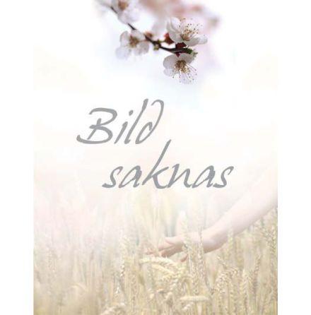 Garden time salva + borste