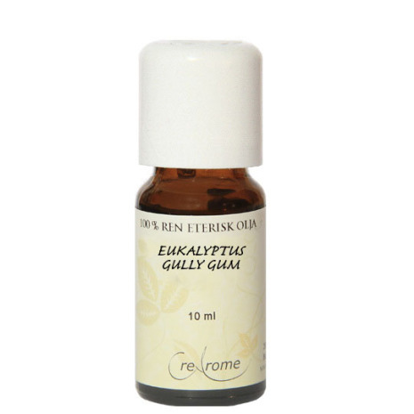 Eukalyptus gully gum eterisk olja