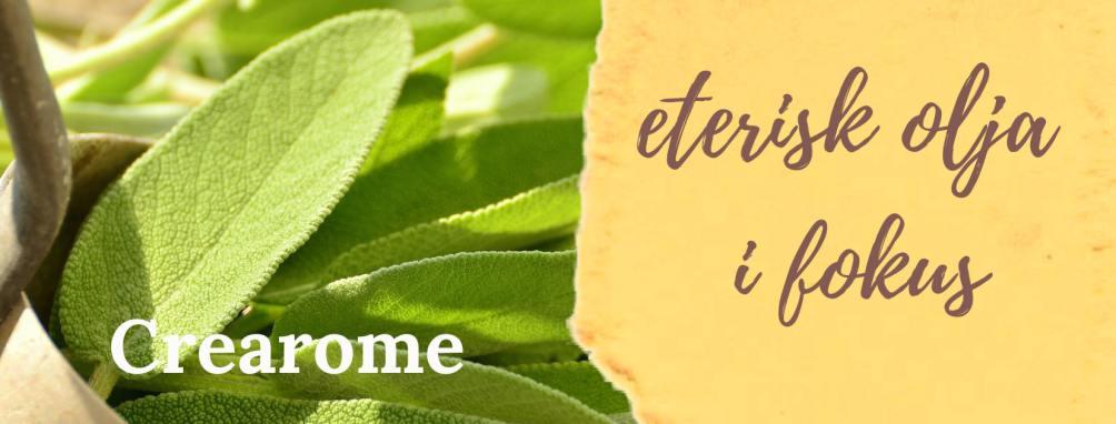 #13 Salvia eterisk olja